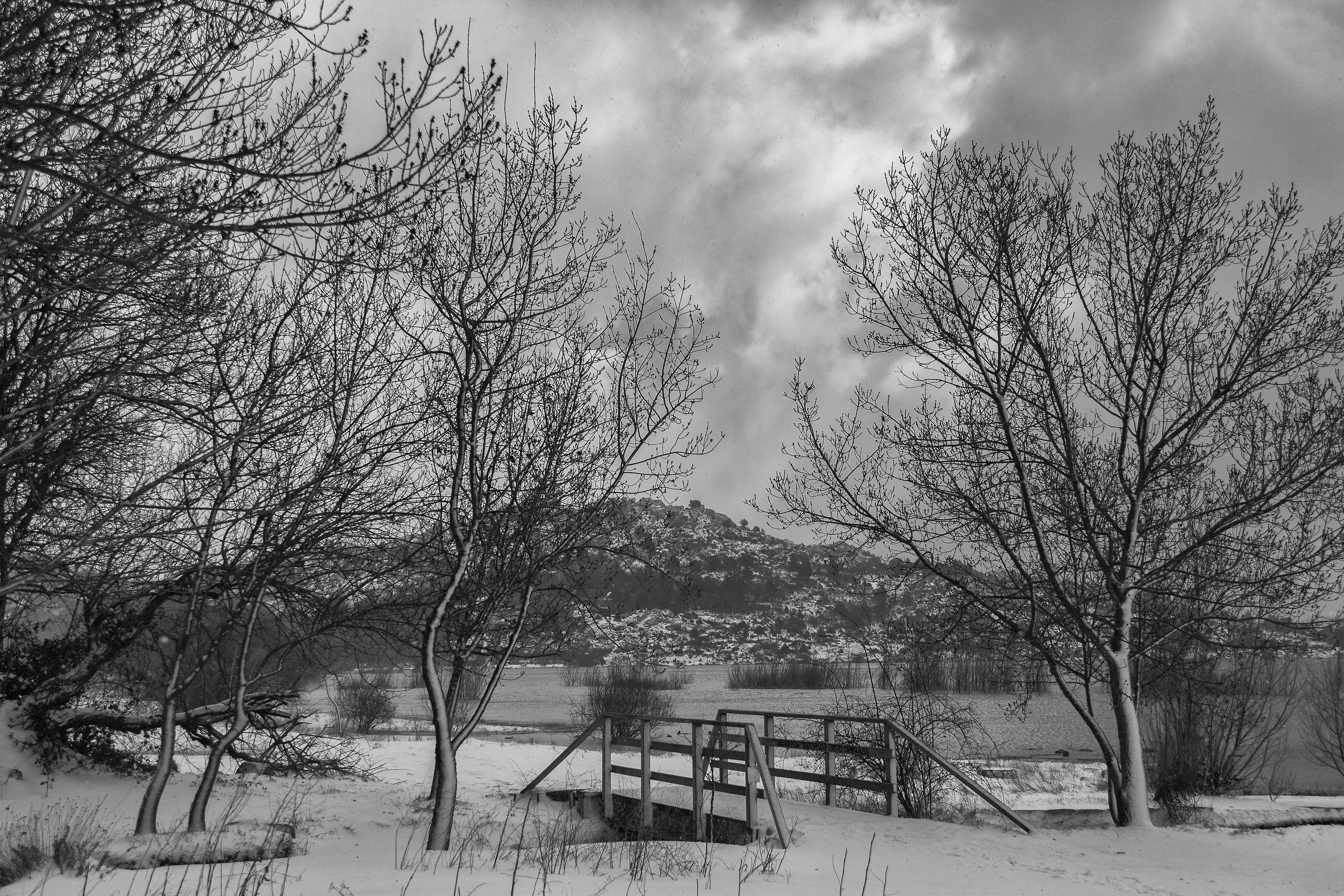 Invierno en Navacerrada